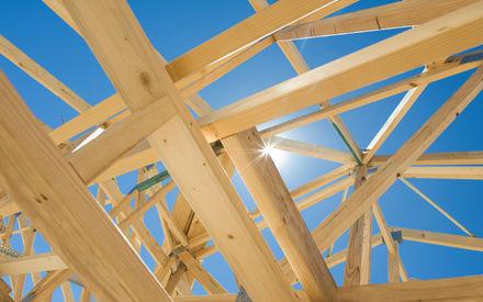 houtskelet nieuwbouw