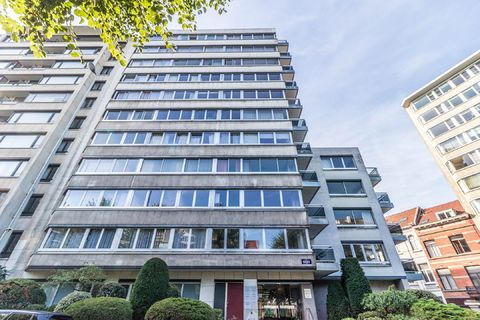 Flat for rent in Brussels