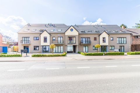Ground floor for rent in Nossegem