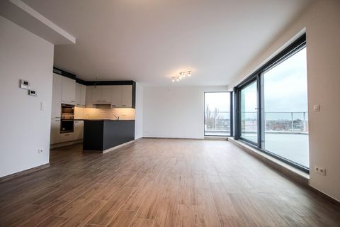 Penthouse for rent in Kortenberg